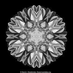 Flower Mandalas. Copyright David J. Bookbinder. For free Flower Mandalas stuff visit flowermandalas.org.  #flower #mandala #meditation #mandala_sharing #mandalamaze #flowermandalas #flowermandala #floral_secrets #flowerstagram #arte_minimal #beautiful_mandalas #mandaladesign #fotocatchers #flowerlovers  #flowersofinstagram #photoart #flowerstalking #the_visionaries #flowerart #sweetdreamsdlf #AColorStory #awesomeflorals #naturelovers  #circlesmagazine #igmasterpiece #minimalism…