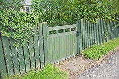 wooden garden gate and matching fence coated in green preservative