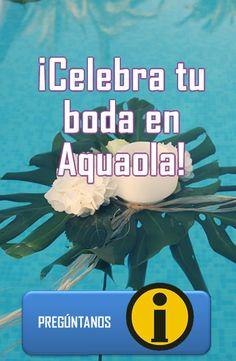 10 Ideas De Ofertas Y Servicios Parque Acuatico Parques Ofertas