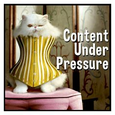 Silly Pics, Silly Pictures, Under Pressure, Content, Cats, Animals, Gatos, Animales, Animaux