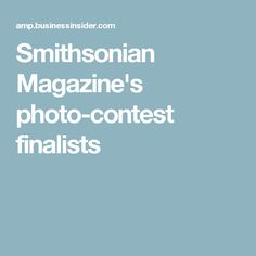 Smithsonian Magazine's photo-contest finalists