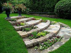 Beautiful steps in garden #garden