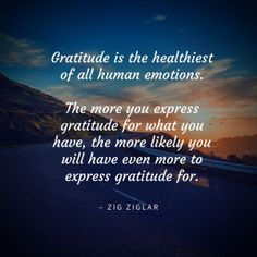 33 Quotes to Help You Experience More Gratitude | TCK Publishing
