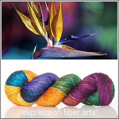 Expression Fiber Arts, Inc. - BIRD OF PARADISE SUPERWASH MERINO SILK PEARLESCENT WORSTED yarn -  incredibly gorgeous tropical mix of colors, $30.00 (http://www.expressionfiberarts.com/products/bird-of-paradise-superwash-merino-silk-pearlescent-worsted.html)