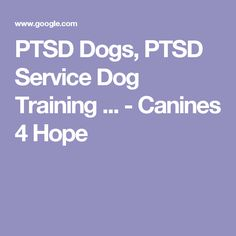 PTSD Dogs, PTSD Service Dog Training ... - Canines 4 Hope
