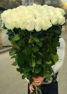 Beautiful Flowers Images, Beautiful Flowers Wallpapers, Beautiful Flowers Garden, Amazing Flowers, Beautiful Roses, Pretty Flowers, Orchid Flower Arrangements, Beautiful Flower Arrangements, Sweet Boys