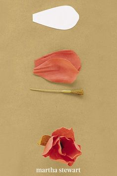 To create this crepe paper tulip, use our template that uses 6 petals, a fringe stamen, and two elongated leaves. Shape petals to cup inward slightly, pleat base of each petal, and pinch folds in place. Then attach heavily cupped petals to stamen; then attach leaves. #marthastewart #crafts #diyideas #easycrafts #tutorials #hobby Pink Sunflowers, How To Make Crepe, Crepe Paper Flowers, Diy, Easy Crafts, Tulip, Template, Tutorials, Bricolage
