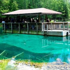 Kitchitikipi Springs at Palms Book State Park, near Manistique, MI. This spring produces 16,000 gallons of water every minute. It is 200 ft. across and 40 ft. deep. It is so clear that you can see to the bottom. Due to the constant flow of water, it always maintains a 45 degree temperature, even in winter. ...*I remember going here with my family, and want to go again.