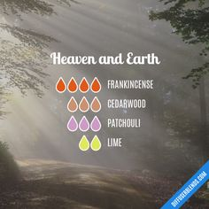 Heaven and Earth - Essential Oil Diffuser Blend