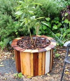 DIY Plastic Barrel Planter – Your Projects Plastic Barrel Projects, Plastic Barrel Planter, Outdoor Crafts, Outdoor Projects, Diy Projects, Pallet Projects, Wooden Planters, Diy Planters, Backyard Patio Designs
