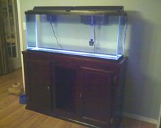 1000 images about aquarium on pinterest aquarium stand for 55 gallon fish tank and stand