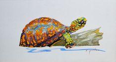 Log Drawing, Painting & Drawing, We Rock, Turtle Swimming, Turtle Pattern, Fun Projects, Pet Birds, Painted Rocks, Original Paintings