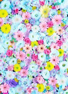 Flores Vintage Wallpaper Buscar Con Google Fondos De Pantalla