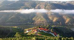 Wine Tourism in Portugal | NelsonCarvalheiro.com #douro