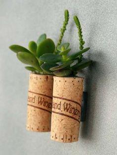 Mini macetas para plantas crasas.