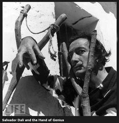 vintage everyday: Amazing Portraits of Salvador Dali
