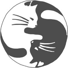 Black and White cats Grunge pastel kittens white cat ying yang kitties goth pale pastel goth Black Cat ying and yang soft grunge ying & yang Yen Yang, Ying Y Yang, Tatoo Cat, I Tattoo, Tattoo Baby, Crazy Cat Lady, Crazy Cats, Body Art Tattoos, Cool Tattoos