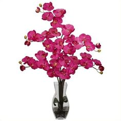 Nearly Natural Phalaenopsis with Vase Silk Flower Arrangement ($92) ❤ liked on Polyvore featuring home, home decor, floral decor, orchid silk flowers, fake flowers, orchid artificial flowers and faux flowers