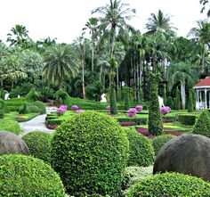 Luxurious Resort Gardens Made For Pure Enjoyment! Garden Landscape Design, Garden Landscaping, Beautiful Gardens, Magical Gardens, Topiary, Botanical Gardens, Garden Plants, Golf Courses, Thailand