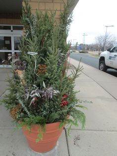 A holiday #planter by Barrett Lawn Care at a commercial property. Greens include spruce tips of various sizes, eucalyptus branches, birch branches, and berries. #holidaydecor #winterplanter #christmasdecor