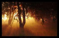 About the magic of light   Landscape photos