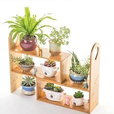 Multi-functional Bamboo Plant Display Stand Storage Kitchen Rack Indoor Plant Shelf Natural Modern : Heavy Duty Flower Planter Solid Multiple Tier Plant Stand Long Bamboo Flower Rack Table Outdoor Shelf for Plants Modern Tiered Outdoor Plant Stand, Plant Shelves Outdoor, Tiered Planter, Indoor Flowers, Flower Planters, Indoor Plants, Indoor Gardening, Small Plant Stand, Wooden Plant Stands
