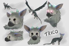 Trico Sketches by IcelectricSpyro.deviantart.com on @DeviantArt