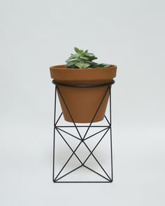 Double Octahedron Ring Planter by Eric Trine / black