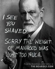 Preach it, beard brother Sigmund!