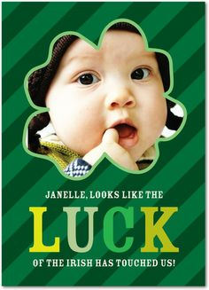 Lucky Irish - St Patricks Day Cards in Spruce Green | Hello Little One