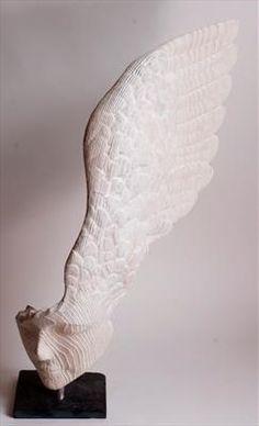 Little Winged Head