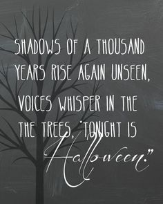 Shadows of a thousand years rise again unseen, voices…