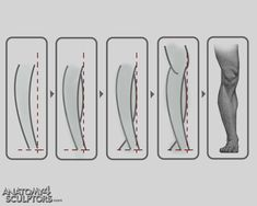 Fotos de Anatomia para esculptores, Photos of Anatomy for sculptors