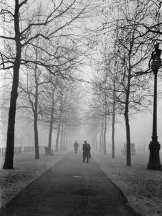 Evelyn Hofer: The Mall, London, 1962.