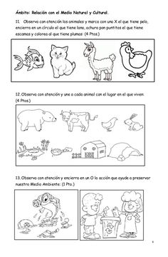 Prueba de diagnóstico Worksheets For Kids, Learning Spanish, Farm Animals, Bullet Journal, Education, Psp, Ideas Para, Google, Speech Therapy