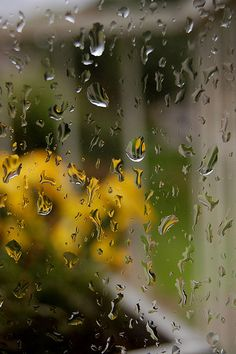 rain again.