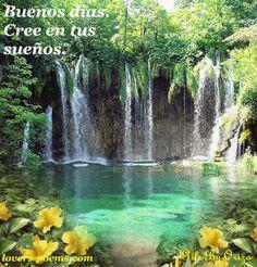 Ver Imagen de una catarata de agua con plantas y flores con movimiento junto a la frase: Buenos días, cree en tus sueños.