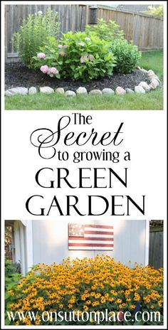 One simple thing that any homeowner can do will give you the greenest garden on the block!