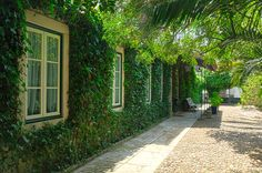 Casa do Foral, Rio Maior, Portugal Portugal, Sidewalk, Exterior, Green, 19th Century, Etchings, Houses, Side Walkway, Walkway