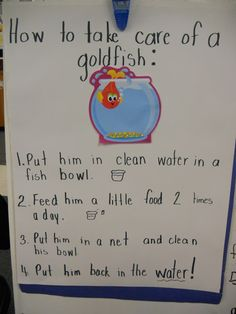 class writing activity for goldfish unit