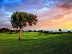 Aphrodite Golf Club, Paphos Thank you for your visit! sports gear