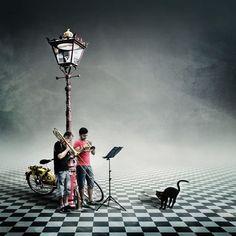 'Katzenmusik' von Christine  Ellger