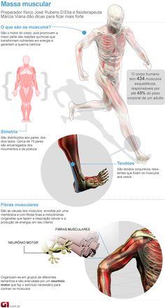 Educação Física e Saúde: Massa Muscular