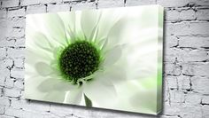 Green Centre from only 14.99 at Canvas Art Print http://www.canvasartprint.co.uk/products/GREEN-CENTRE-442386.aspx