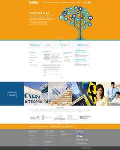 K uvedení produktu AuditPro 8 jsme pro našeho partnera společnost truconneXion realizovali modernizaci webových stránek. Více na - www.auditpro.cz