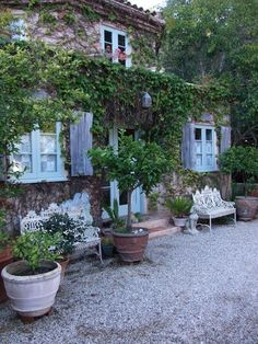 French home. gravel. potted trees. lovely
