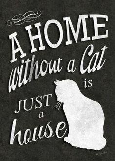 text art love pet animal home puppy black white vintage cat