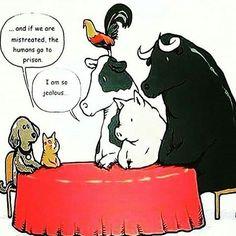 🤔🤔 GO VEGAN!!! 🌱🌱 . . #VeganCommunity #GoVegan #vegetarian #animalrights #veganrules #veganhealth #veganpeople #CrueltyFree #veganfun #bestofvegan #vegetables #veganfoodlovers #plantbased #vegan #vegantips #vegano #alllifematters #friendsnotfood #speciesism #govegan #animalabuse #choosecompassion #chooselife #cow #pig #chicken #cat #dog #respectlife