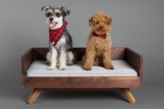 The Joey High Back Bed is one of PUP & KIT's most popular pet beds. Made-to-order out of solid wood in Toronto, Ontario, this mid-century modern pet bed wi Yorkie Dogs, Puppies, Dog Furniture, Natural Bedding, Leather Bed, Pet Beds, Animal Quotes, Large Dogs, Pet Shop