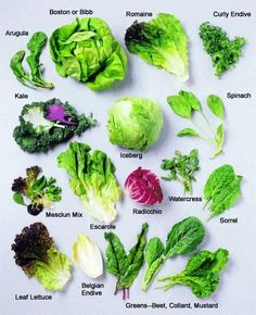types of salad greens Types Of Lettuce, Types Of Salad, Fruit And Veg, Fruits And Veggies, Vegetables, Cooking Tips, Cooking Recipes, Cooking Food, Lettuce Recipes